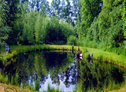 естественное озеро