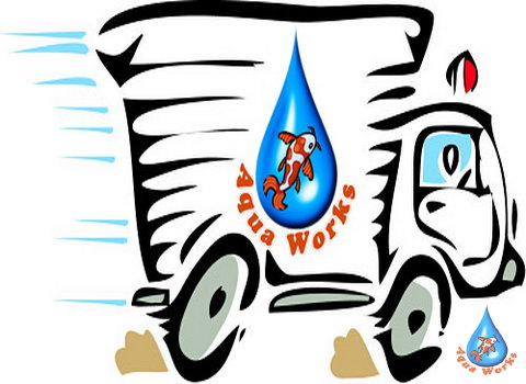 Aquaworks-Vyezd-spezialista-po-vodoemam