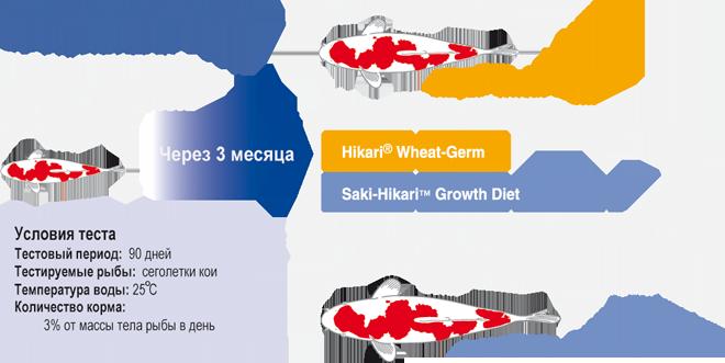 resultaty-testa-Saki-Hikari-Growth